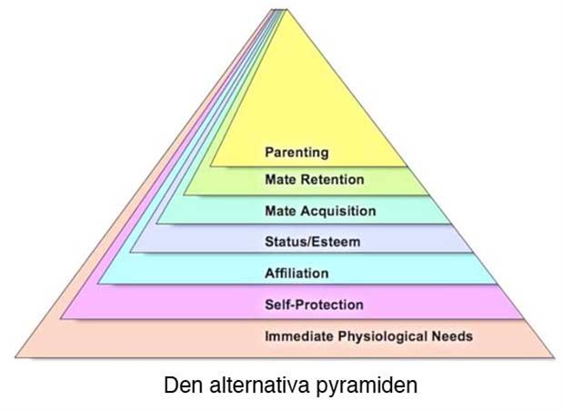 http://blog.svd.se/idagbloggen/files/2010/12/alternativpyramid.jpg